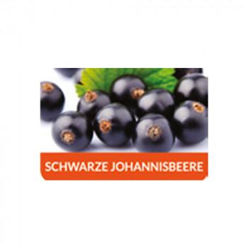 Schwarze Johannisbeere 10ml Aroma by FlavourArt