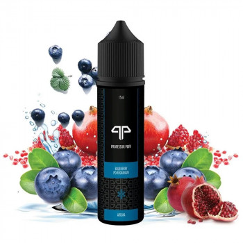 Blueberry Pommegranate 15ml Longfill Aroma by Professor Puff