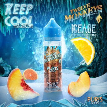 Puris ICED Ice Age Serie (50ml) Plus e Liquid by Twelve Monkeys
