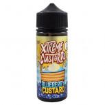 Blueberry Custard 100ml Shortfill Liquid by Xtreme Juice